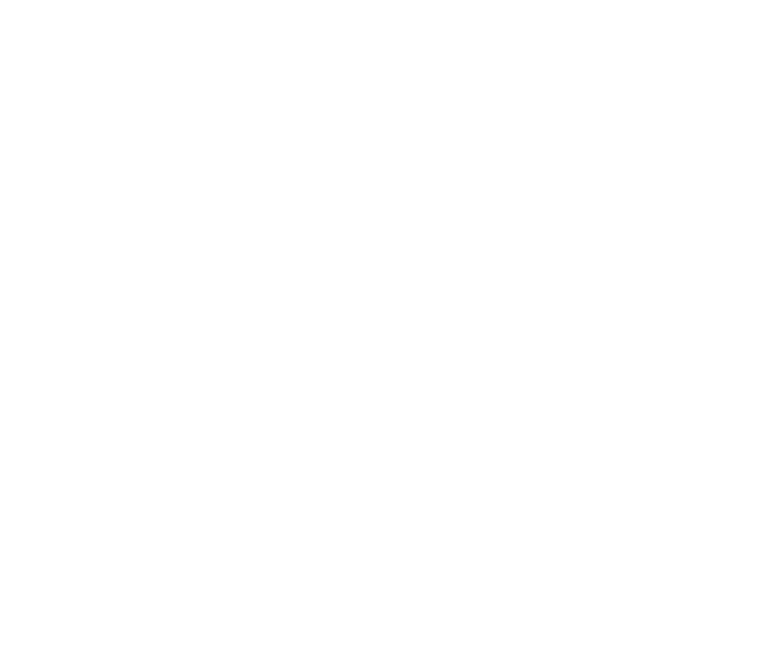logo hpm neg 2